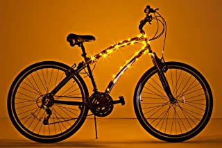 Best monkey on bicycle pictures Reviews