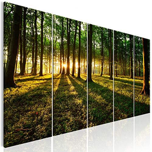 decomonkey Bilder Wald 225x90 cm XXL 5 Teilig Leinwandbilder Bild auf Leinwand Wandbild Kunstdruck Wanddeko Wand Wohnzimmer Wanddekoration Deko Sonne Natur