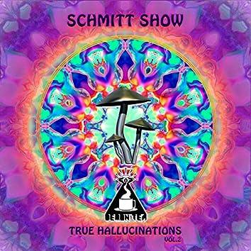 True Hallucinations, Vol. 2