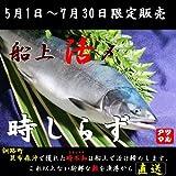 北海道【時鮭 トキシラズ】 船上活〆 昆布森沖【定置】2.5~3.0キロ