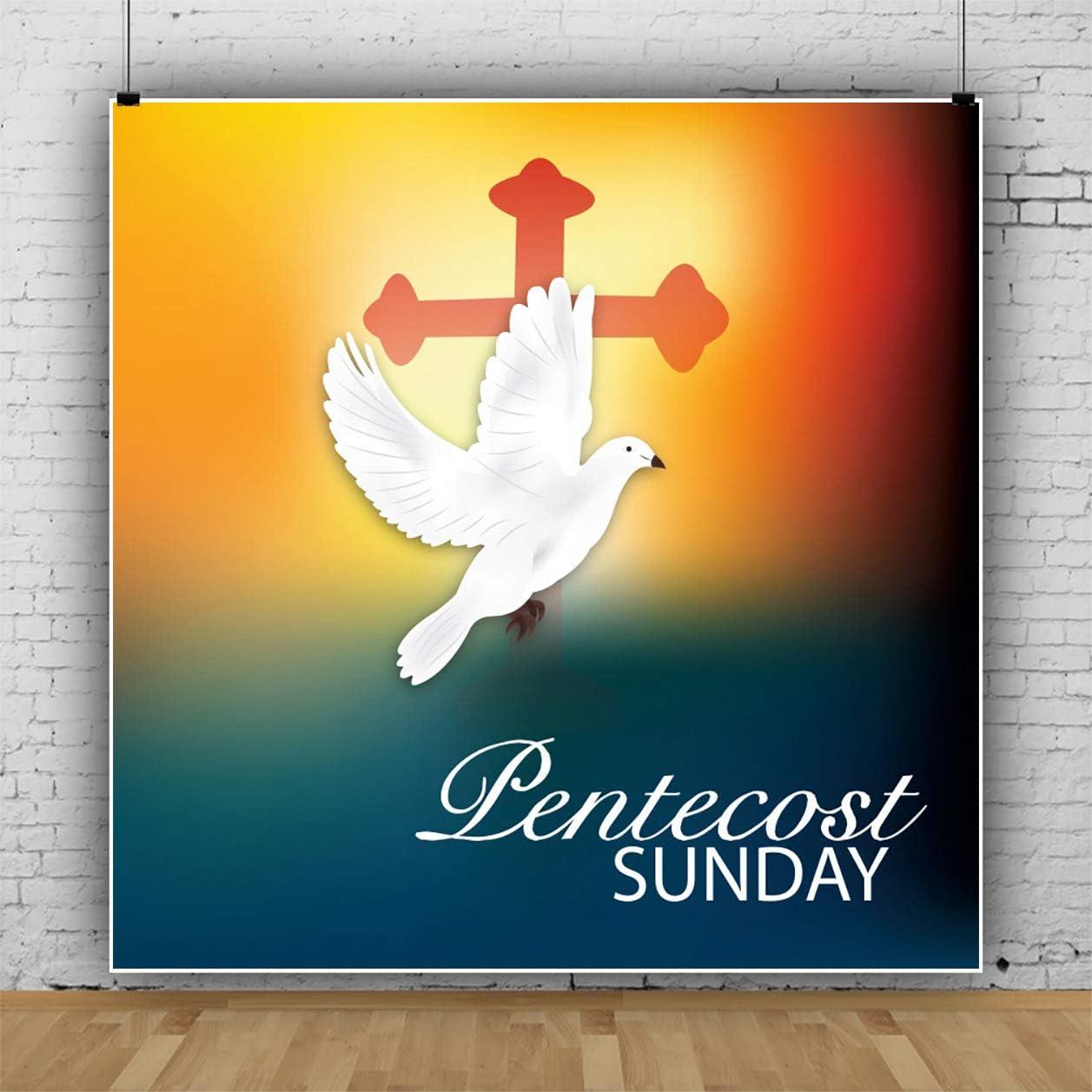 Baocicco 10x10ft Pentecost Sunday Backdrop Holy Spirit of Lord Crucifix Cross Holy Flame Photography Background Wallpaper Decoration Baptism Christening Chrismation Holy Communion Photoshoot Props