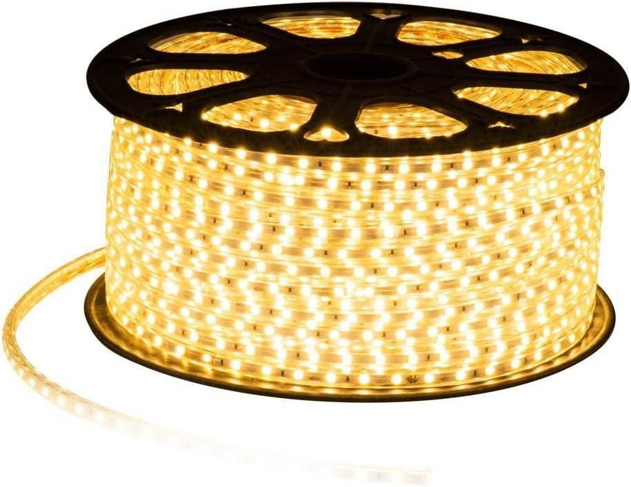 MODOAO LED Strip Ranking TOP5 Light 32.8ft 10M 5050 SMD White Popular overseas Warm Waterproof