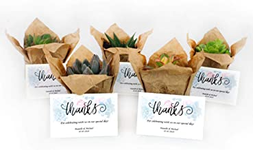 Set of 50 Live 2.25-Inch Succulent Plants with Free Personalized Thank You Cards - Potted and Wrapped in Craft Paper with Twine - Perfect for Wedding and Party Favors or Corporate Gifts