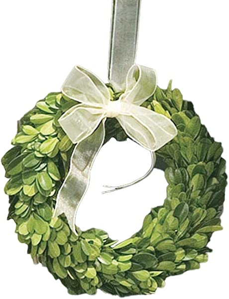 Napa Home Garden 6 Inch Preserved Boxwood Wreath With Ribbon
