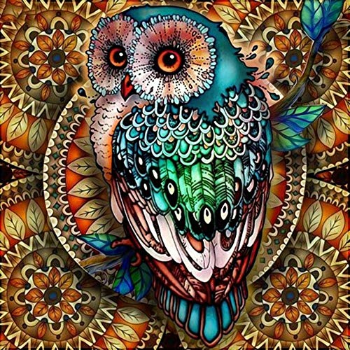 DIY 5D Diamond Painting Kit Full Round Drill Round Rhinestone Embroidery Pictures Arts for Home Wall Decoration Owl 11.8x11.8in 1 Pack by Upmall
