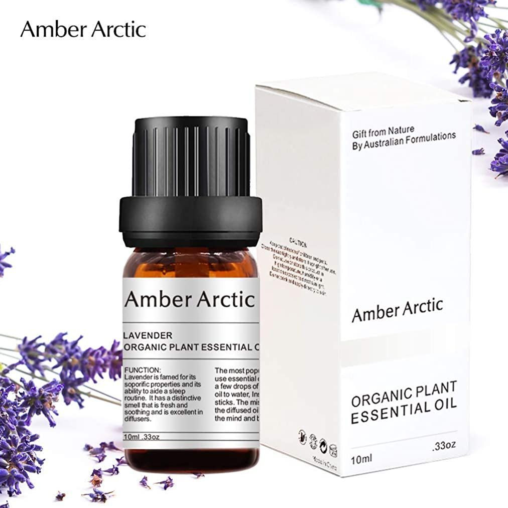 ページェント削減性交Amber Arctic ラベンダー エッセンシャル オイル - 100% 純粋 最良 治療 グレード エッセンシャル オイル、 ディフューザー 用 天然 アロマ オイル (10ミリリットル)