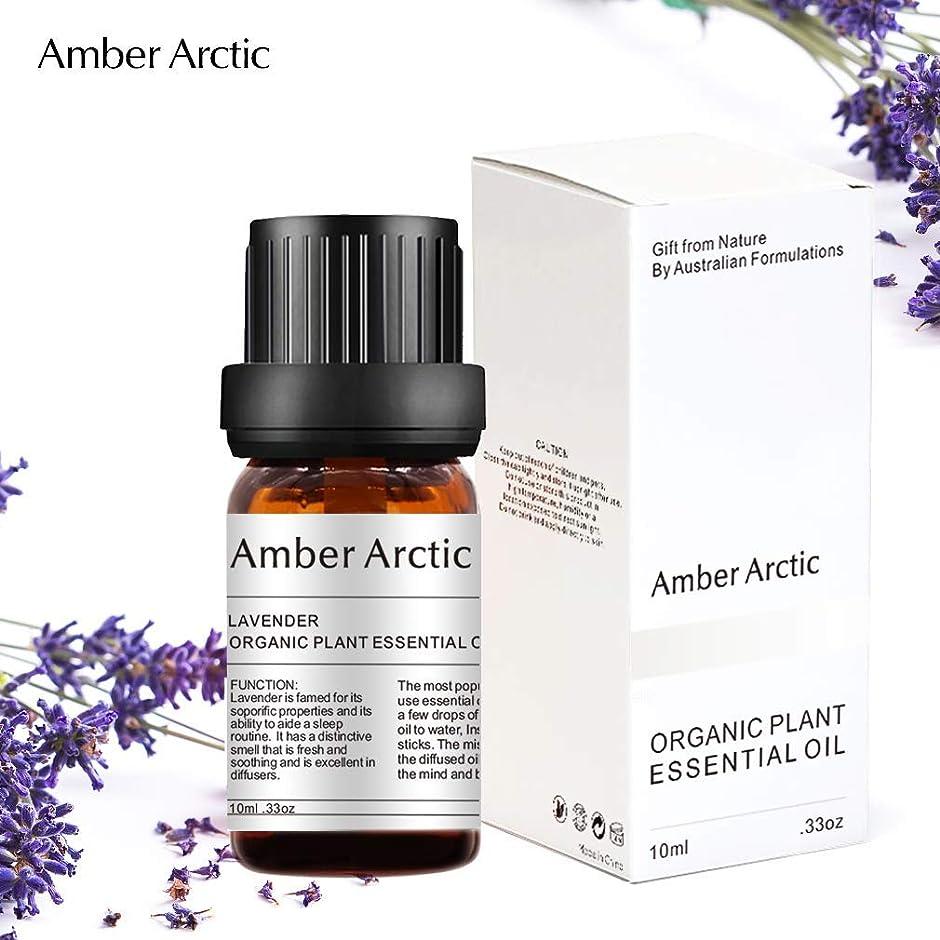 舌窓を洗う使い込むAmber Arctic ラベンダー エッセンシャル オイル - 100% 純粋 最良 治療 グレード エッセンシャル オイル、 ディフューザー 用 天然 アロマ オイル (10ミリリットル)