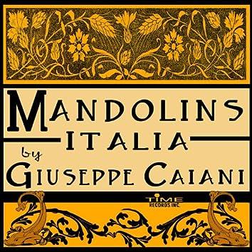 Mandolins Italia