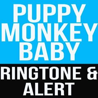 baby english song ringtone