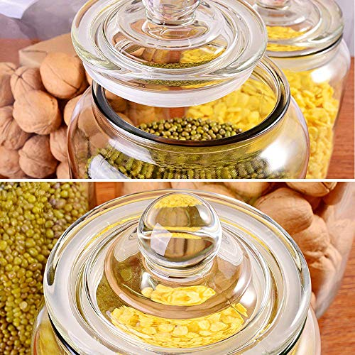 Glass Jars,Candy Jar with Lid For Household,Food Grade Clear Jars - 1/2 Gallon (3)