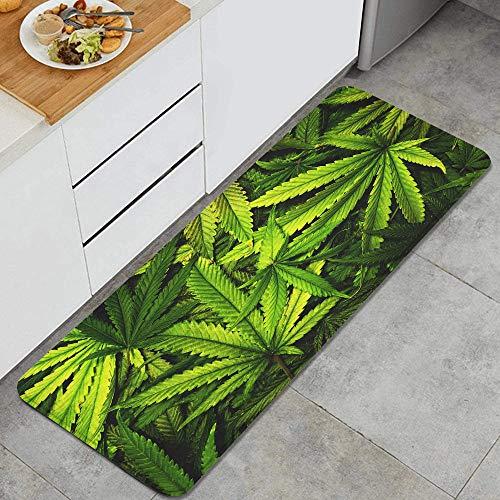 GEEVOSUN Textura de Cannabis Fondo de Pila de Hojas de Marihuana con Estilo Plano Vintage Alfombrillas de Cocina Antideslizantes Felpudo Lavable Juego de Alfombras de Microfibra