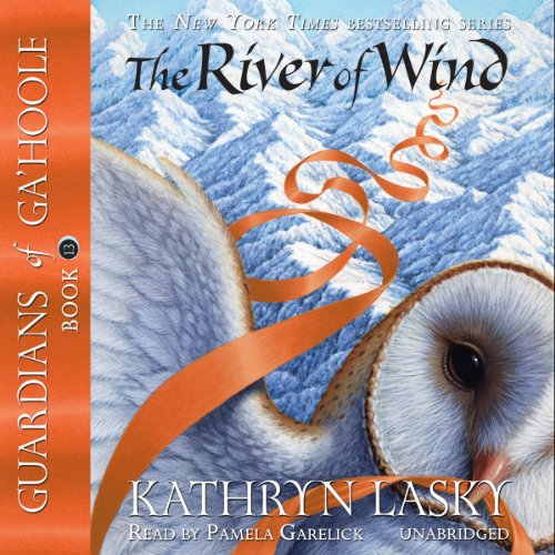 The River of Wind audiobook cover art
