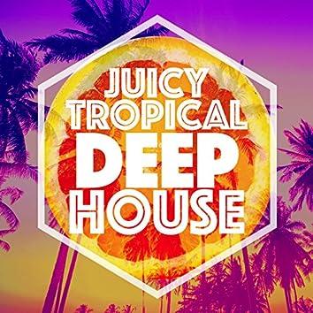 Juicy Tropical Deep House