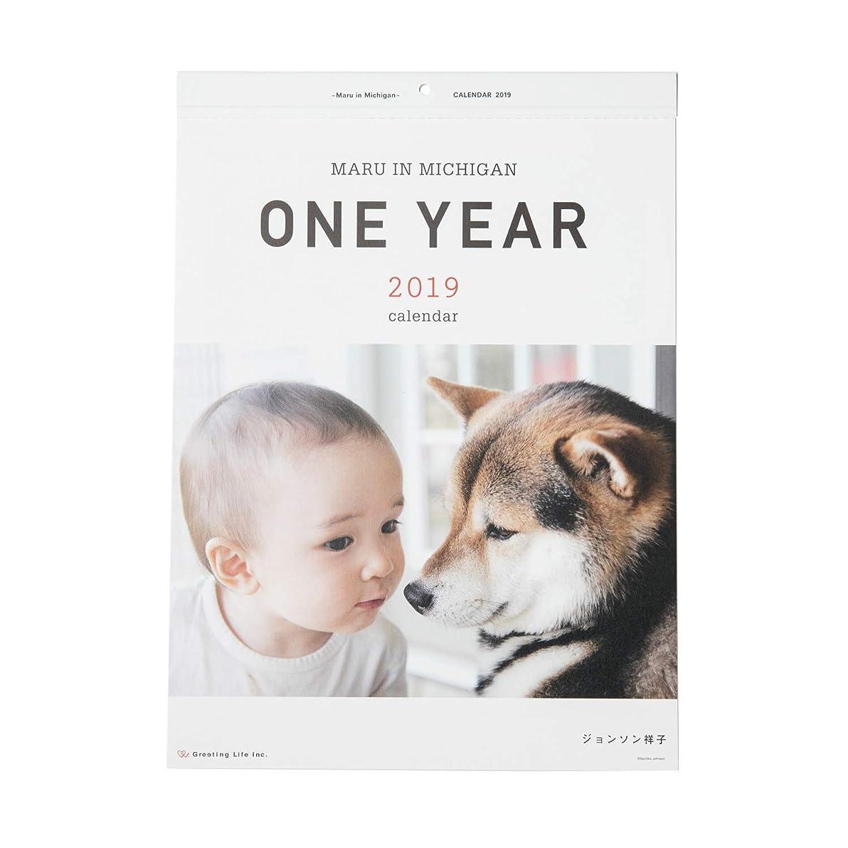バストいたずら単なるグリーティングライフ 2019年 ONE YEAR ~Maru in Michigan~ カレンダー 壁掛け C-1055-JS 1月始まり