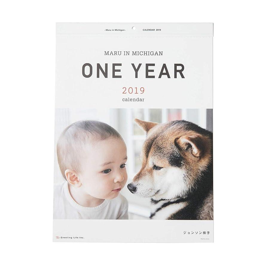 バーマド漂流大脳グリーティングライフ 2019年 ONE YEAR ~Maru in Michigan~ カレンダー 壁掛け C-1055-JS 1月始まり
