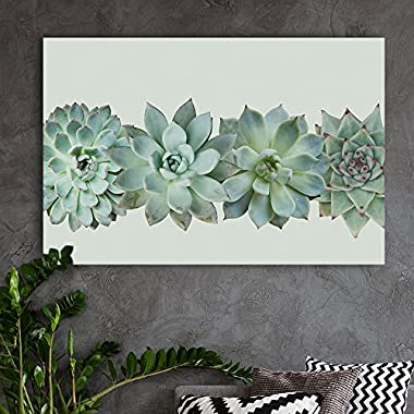 wall26 Canvas Wall Art - Closeup of Succulent Plants - Giclee Print Gallery Wrap Modern Home Decor Ready to Hang - 24x36 inches