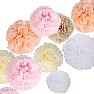 25PCS Tissue Paper Pom Poms Fluffy Paper Flowers Colorful Hanging Flower Ball for DIY Paper Craft Decorations, Wedding Dec...