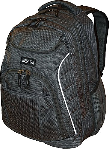 Kenneth Cole Reaction Goliath Double Gusset Expandable 17-Inch Computer Backpack (Charcoal)