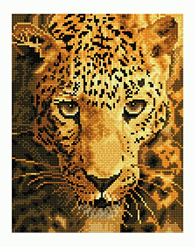49 x 49 cm Kit de pintura dise/ño de puntos Diamond Dotz