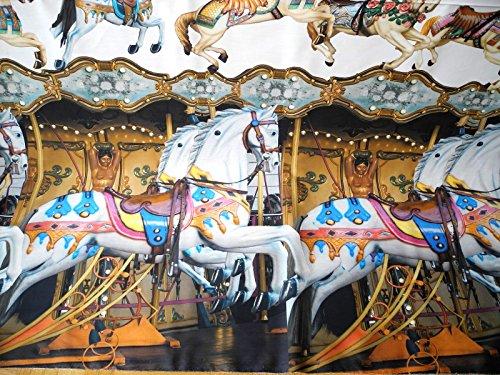 Qjutie Lottashaus 150x100cm Stoff Karussell Pferd Schaukelperd Digitaldruck Stenzo 100% Baumwolle