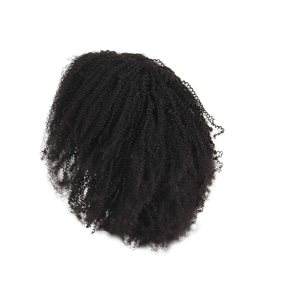 単位菊安西かつらレース化学繊維爆発ヘッド小体積短い髪かつらの前に