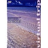 virtual trip THE BEACH MALDIVES[低価格版] [DVD]