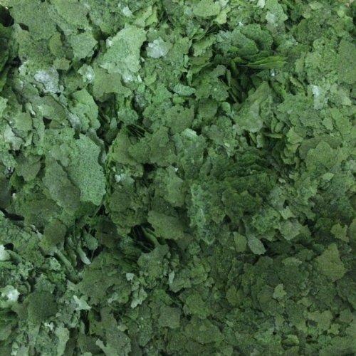 Finest Fish Food 500 g d'algues alimentaires spiruline pour poissons tropicaux d'aquarium