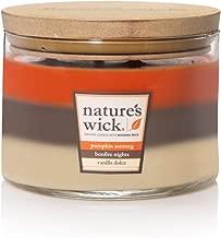 Nature's Wick Multi Scent 3 Wick Scented Candle|Pumpkin Nutmeg/Bonfire Nights/Vanilla Dolce Trio Jar Candle|Wood Candle Wick 18 oz. Glass Jar Candle