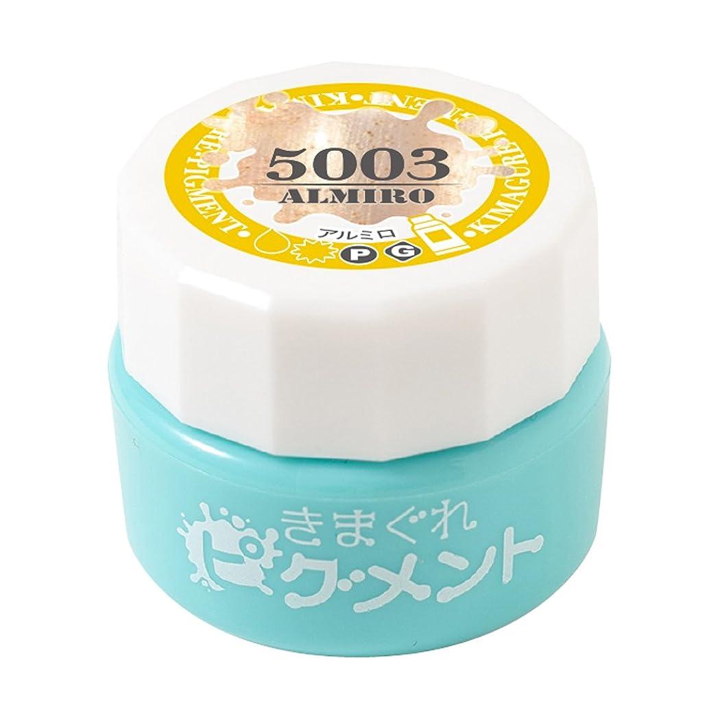 メーター薄汚い天Bettygel きまぐれピグメント アルミロ QYJ-5003 4g UV/LED対応