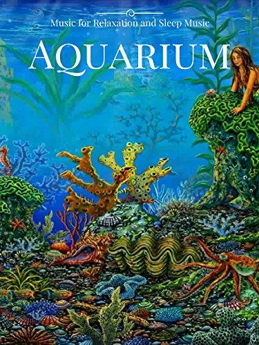 Aquarium Music for Relaxation and Sleep Music