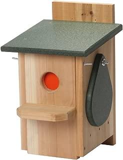 house sparrow trap