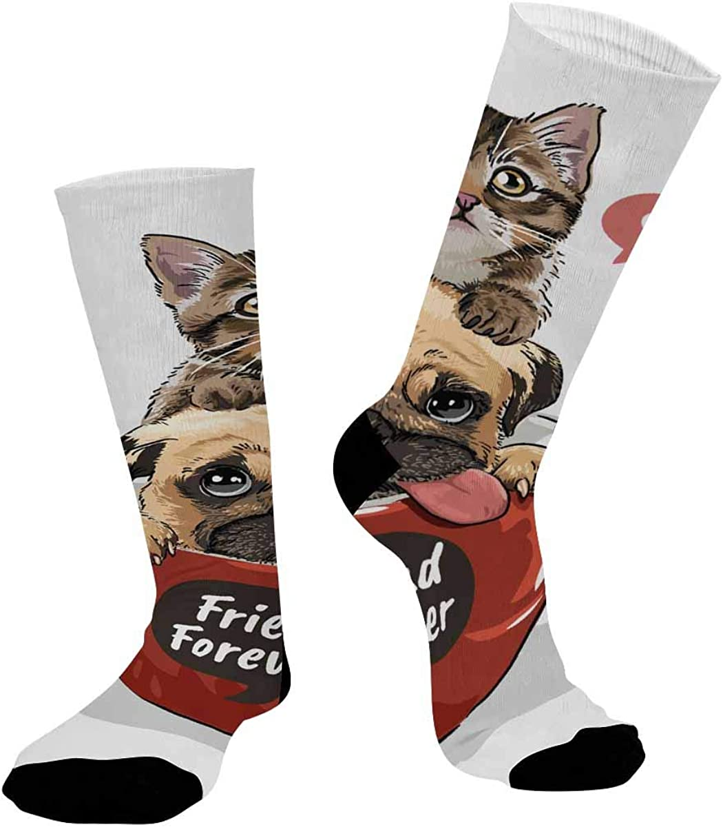 INTERESTPRINT Sublimated Crew Casual Athletic Socks Pug Dog and Little Kitten