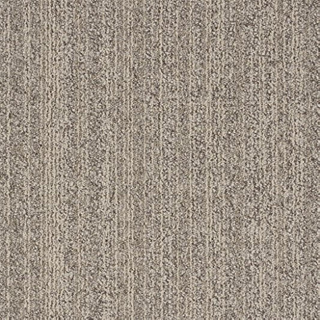削除する哲学博士からスミノエ タイルカーペット ECOS ID-4006 50X50cm 16枚セット 13347560