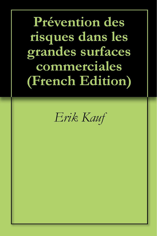 Prévention des risques dans les grandes surfaces commerciales (French Edition)