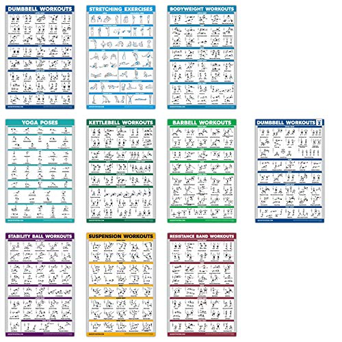 QuickFit Übungsposter-Set, Hantel-Volumen 1 & 2, Suspension, Kugelhantel, Widerstandsbänder, Stretching, Körpergewicht, Langhantel, Yoga-Posen, Gymnastikball (laminiert, 45,7 x 68,6 cm), 10 Stück