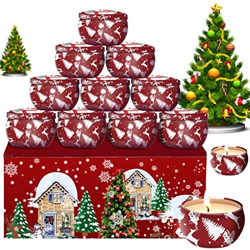 Daiweier 12er Set Aroma Kerzen Duftkerzen Weihnachten Party Dekor Geschenk Set Natürliches Sojawachs Für Aromatherapie Massage Stress Abzubauen