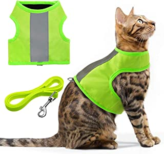 EXPAWLORER Reflective Cat Jacket Harness with Leash Set for Walking, Safety Traffic Soft Nylon Adjustable Vest for Pet Small Dogs Fluorescent Green