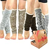 TeeHee Gift Box Women's Fashion Leg Warmers 4-Pack Assorted Colors (Lace with Button)
