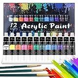 Set di Colori Acrilici,TOUSEEDA 12 Colori Acrilici per Dipingere per Tela, Legno, Ceramica,Tessuti Set di Pittura Acrilica per Bambini, Principianti