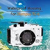 Sea frogs Pour appareil photo Olympus TG-6 195FT/60M - Étanche - Noir (plié + filtre rouge)