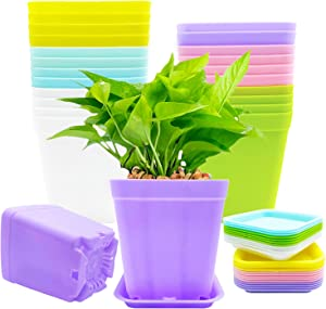 24 PCS 3 Inch Plastic Plant Pots,Seedling Nursery Pots with Saucers,Succulent Planter Container for Garden,Room,Office,Balcony Decor,Multicolor