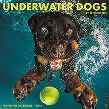 By Seth Casteel - 2016 Underwater Dogs Wall Calendar (2015-08-31) [Calendar]