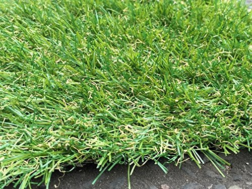 Berlin 26mm Pile Height Artificial Grass   Choose from 47 Sizes on this Listing   Cheap Natural & Realistic Looking Astro Garden Lawn   2 x 1m of Cheap High Density Fake Turf