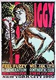 Iggy Pop Poster, A2, 59,4 x 42 cm