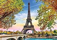 DMFNGJSD 数字油絵 フレームレス 、数字キット塗り絵 手塗り DIY絵-ロマンチックなパリ-デジタル油絵 40x50 cm