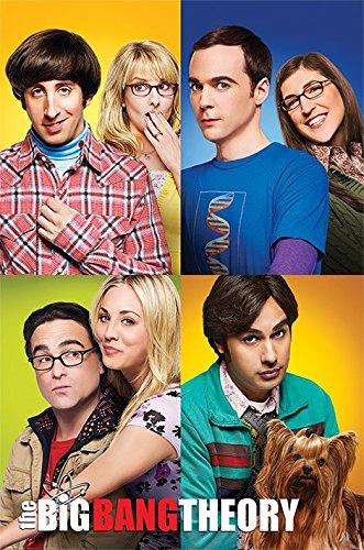 Pyramid International Les Blocs de The Big Bang Theory Maxi Poster, Multicolore, 61 x 91.5 x 1.3 cm