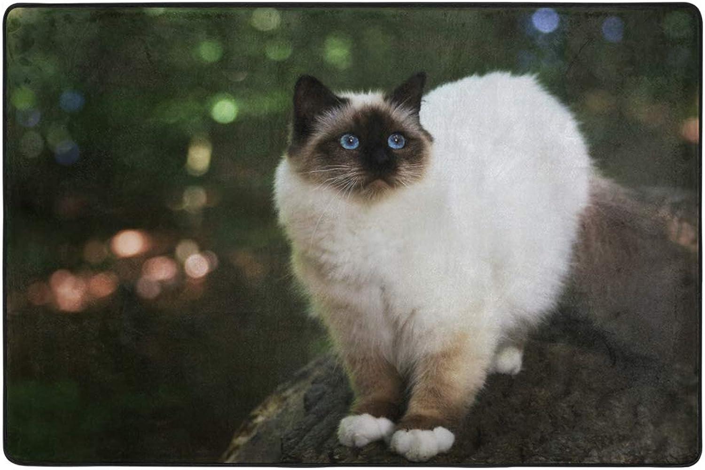 Fluffy Beige Cat Dormat Decor Indoor Outdoor Welcome Door Anti Skid Mat Rug for Home Office Bedroom