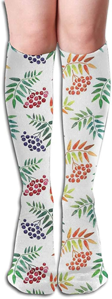 Men's and Women's Funny Casual Combed Cotton Socks,Hand Drawn Berries and Foliage Illustration Colorful Blooming Spring Nature Design