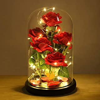 Beauty and the Beast Rose, Romantic Rose for Women, The Newly Designed Gift Box Rose in a Glass Dome with LED Light Wooden Base for Wedding, Valentine's Day, Christmas, Halloween Decorations