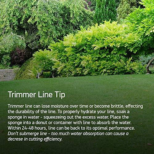 Oregon 21-365 Gatorline Round String Trimmer Line .065-Inch Diameter 1-Pound...